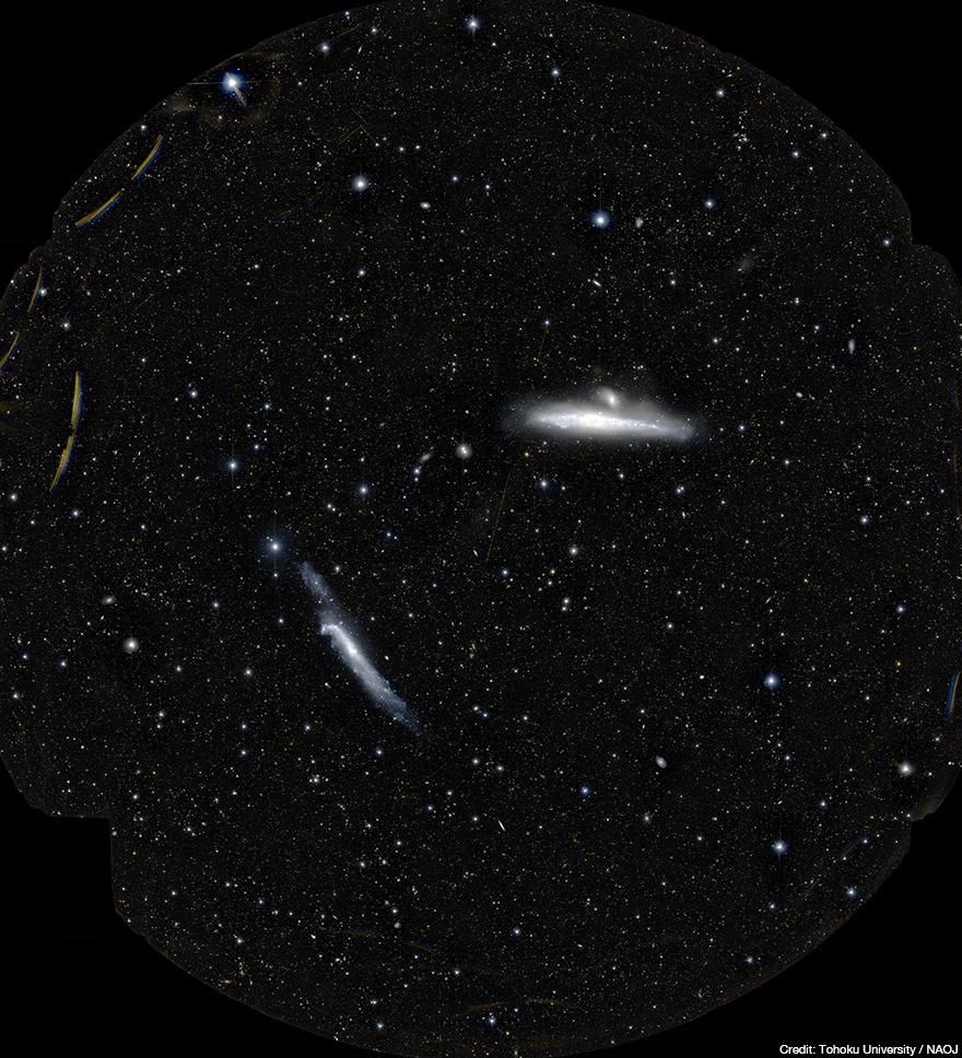 すばる望遠鏡に搭載された超広視野主焦点カメラHyper Suprime-Cam(HSC)の1視野に写ったクジラ銀河(右上)とホッケースティック銀河(左下)(クレジット:東北大学/国立天文台)