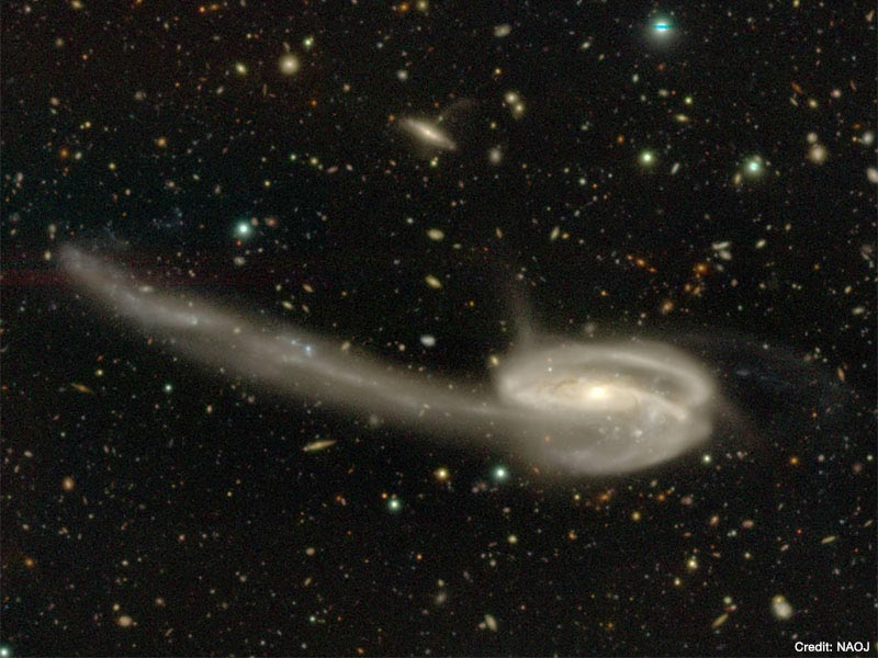 The Tadpole Galaxy (UGC 10214) displayed in the HSC Viewer.