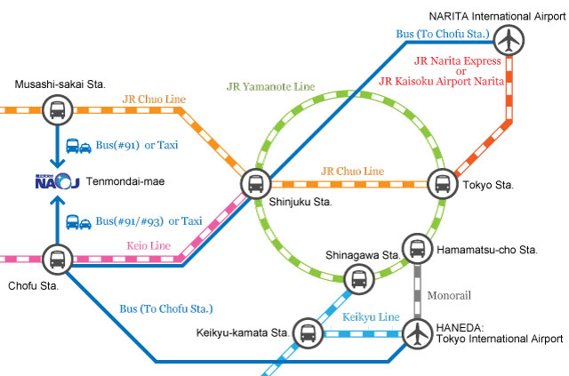 About the access routes of the train and bus from the main area