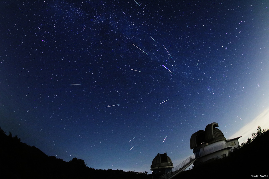 Photo of the many Perseids Meteors