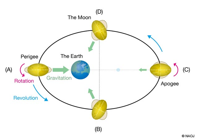 Cool Still Hot Inside The Moon Tidal Heating In The Deepest Part Of The Wiring 101 Archstreekradiomeanderfmnl