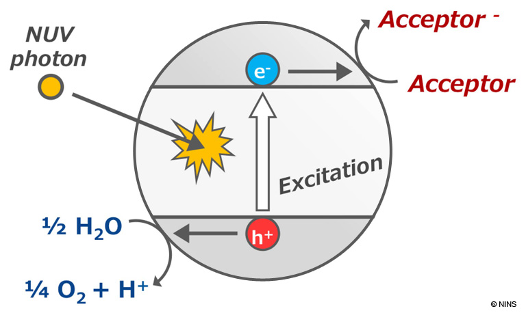 Photocatalytic Reaction of Titanium Oxide